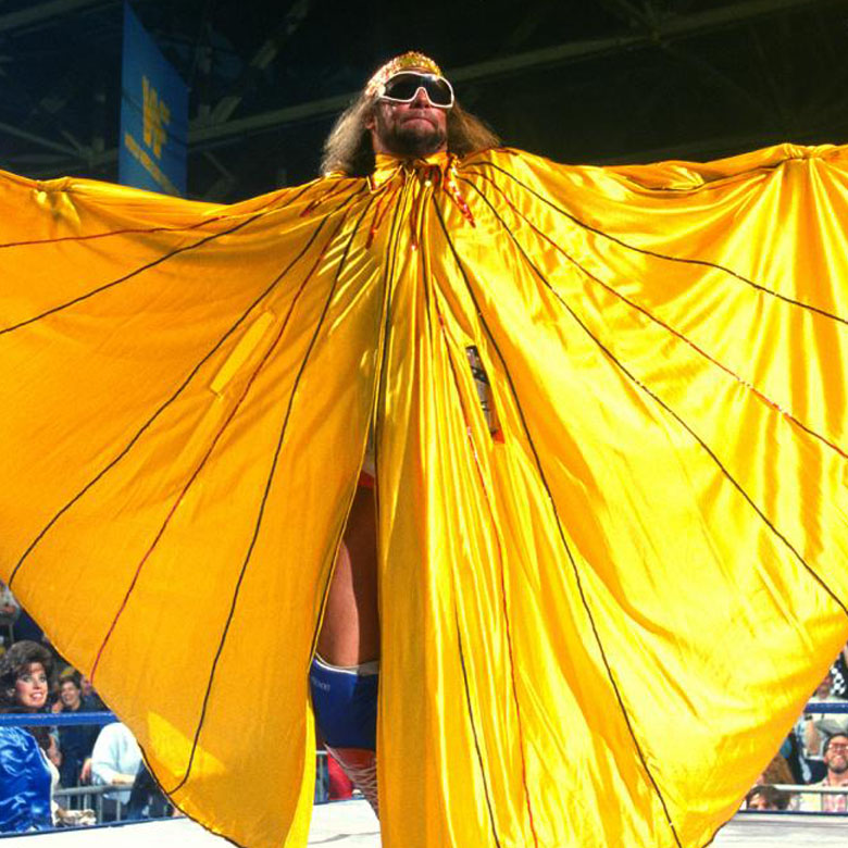 Randy Savage in WWE